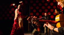 Los Tarantos - flamenco show