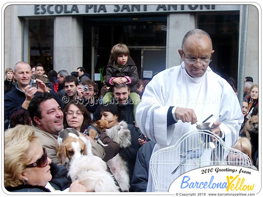 Festa dels Tres Tombs pet blessing