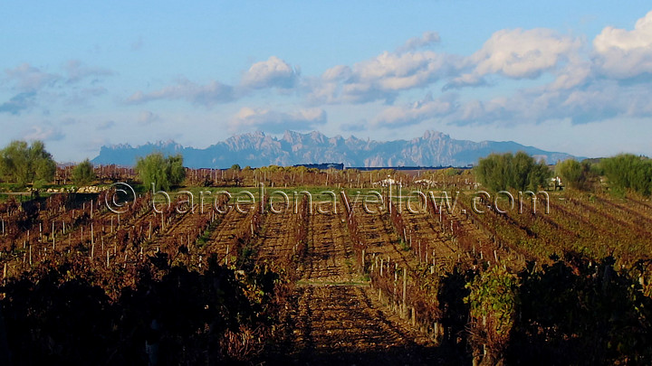 montserrat_view_from_penedes