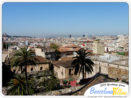 Barcelona cathedral roof views
