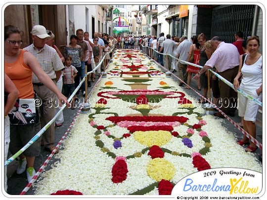 Pictures Sitges flower carpet festival