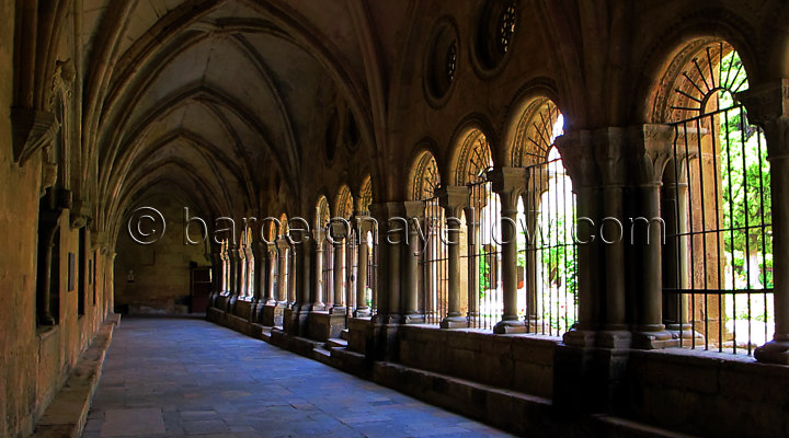 720x400_photos_tarragona_cathedral_arches