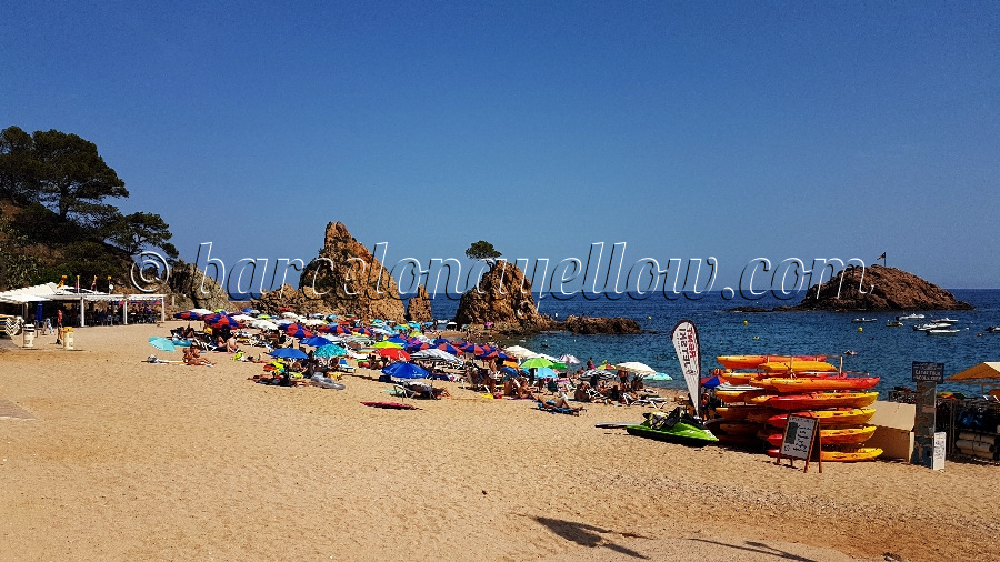 small-beach-tossa-de-mar_costa-brava